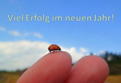 Marienkäfer am Finger bringt Glück im neuen Jahr.